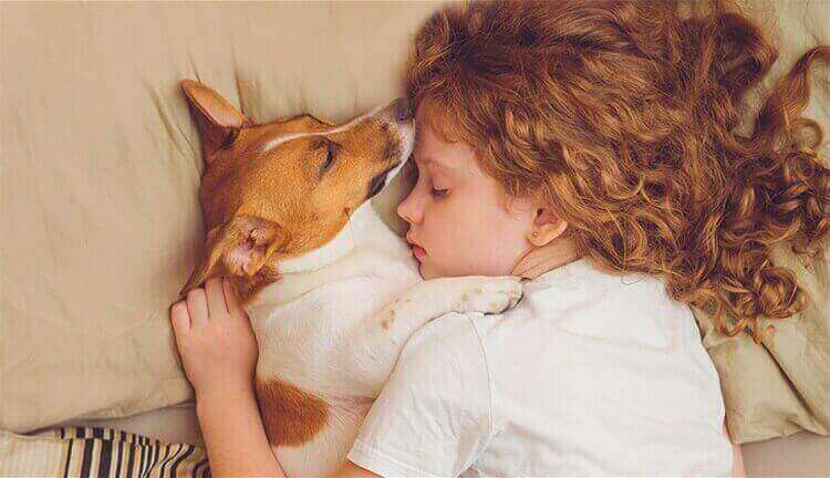 girl-sleeping-with-dog-in-bed