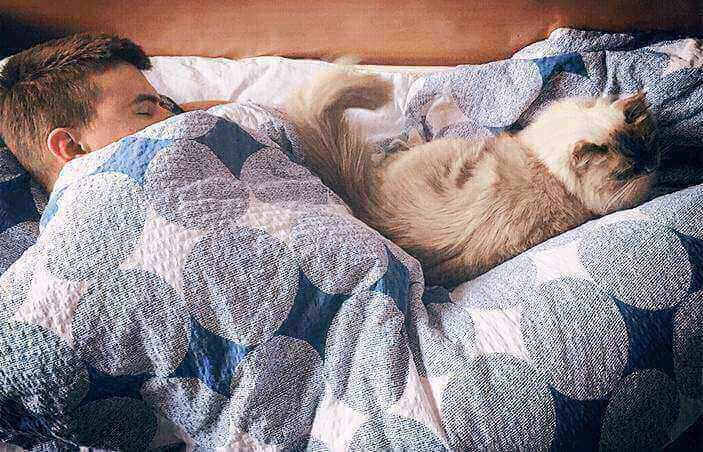 Sleeping-with-cats-in-bed